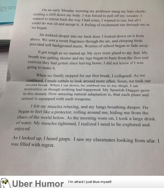 My best friends essay